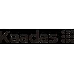 Электронные замки KAADAS